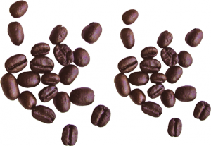 coffee_beans_PNG9272